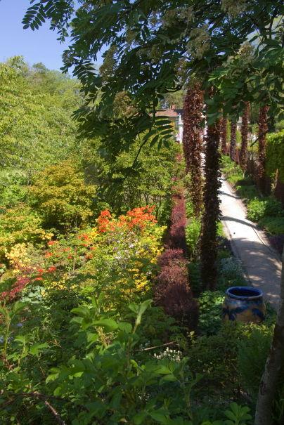 Hagedesignerens hjørne « hagedesign